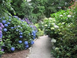 Trelissik_Garden