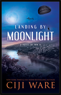 Landing by Moonlight